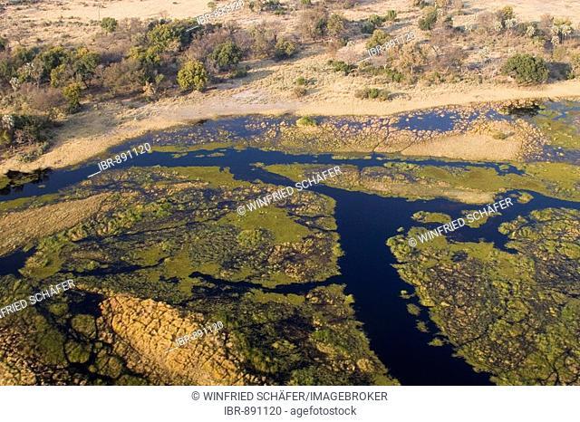 Aerial photo, Okawango Delta, Botswana, Africa