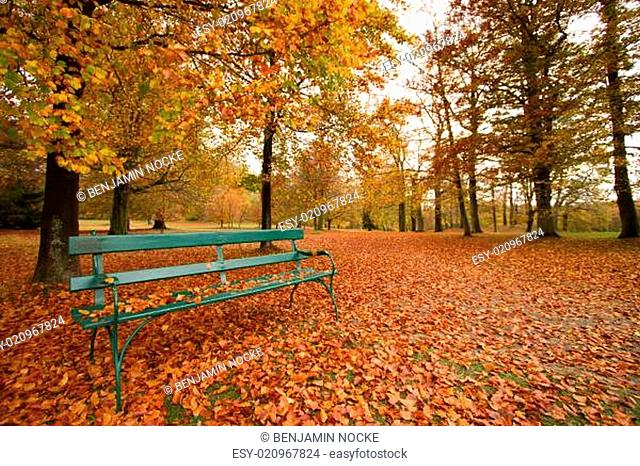 park bench autumn leaves - Herbstlaub