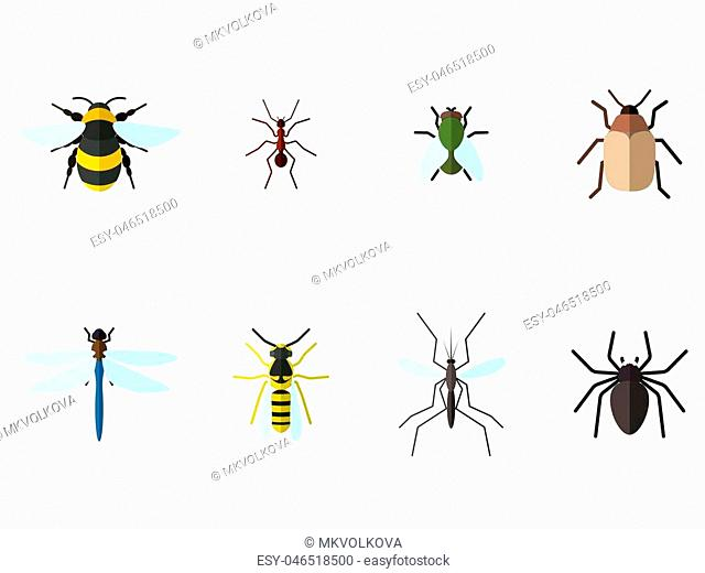 Set of 8insects icons in flat style. Bee, ant, fly, beetle and other