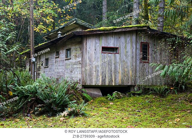 Abandoned cabin on Galiano Island, British Columbia