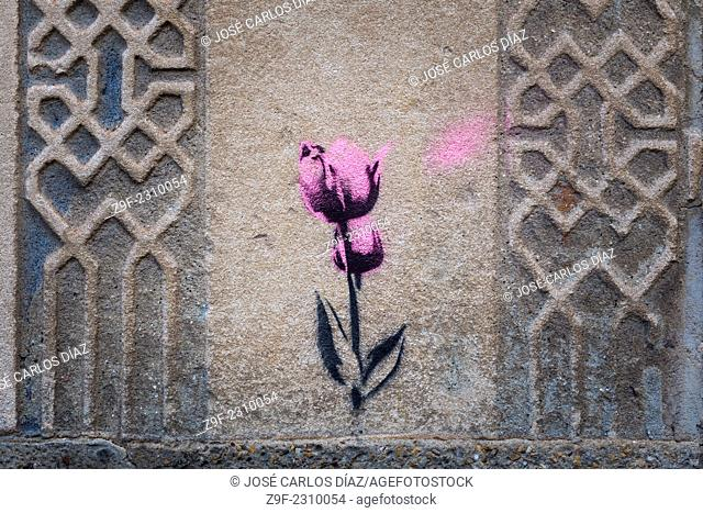 Pink tulip stencil painted on a wall with sgraffito, Segovia, Spain