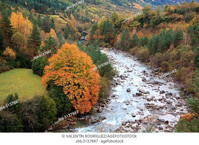 Ara river near of Torla in the Broto valley. Ordesa y MOnte Perdido national park. Huesca