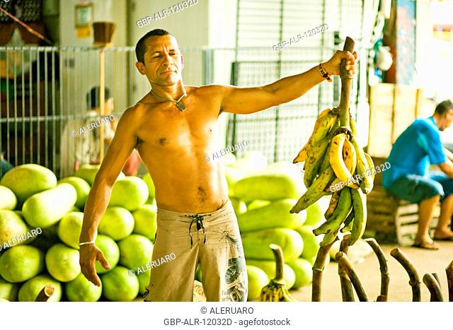 Fair of Banana, Center, Amazônia, Manaus, Amazonas, Brazil