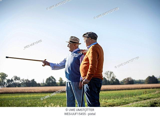 Two old friends standing in the fields, pointing with walking stick