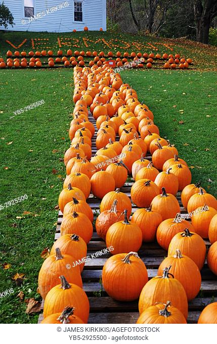 The pumpkins spell out 'Vermont, ' at a roadside farm stand in Pownal, VT