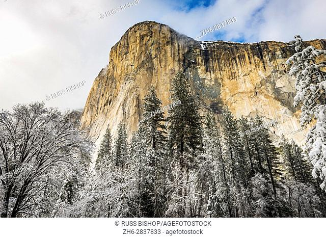 El Capitan in winter, Yosemite National Park, California USA