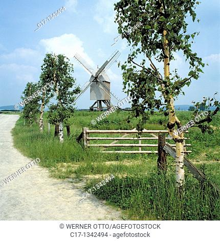 Germany, Detmold, Werre, nature reserve Eggegebirge-South Teutoburg Forest, Eggegebirge, Teutoburgian Forest, Ostwestfalen-Lippe, Westphalia