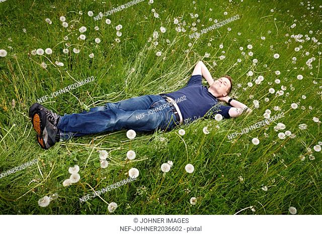 Smiling man lying on meadow