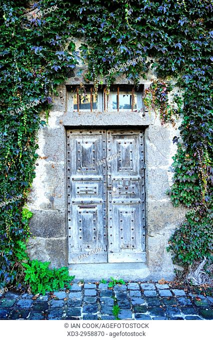 old door and ivy, Salers, Cantal Department, Auvergne, France