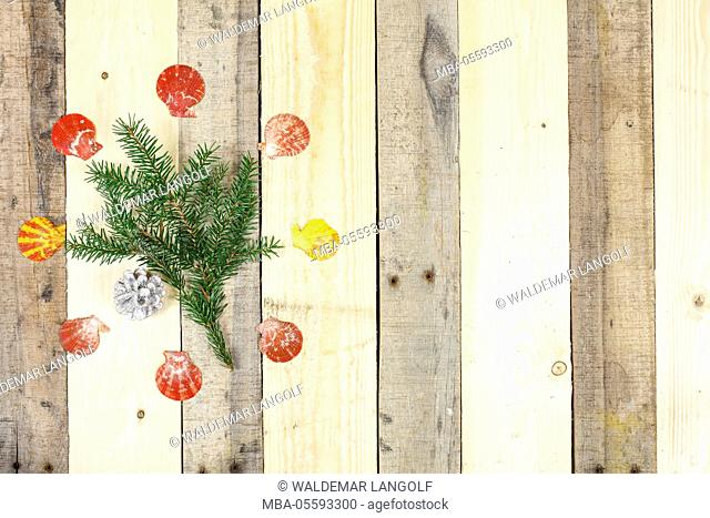 Christmas decoration, twig, decoration cones, scallop