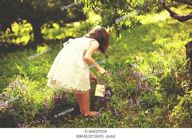 Girl picking flowers in rural field