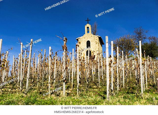France, Drome, Tain l'Hermitage, Rhone valley, hill and vineyard of Hermitage, the chapel