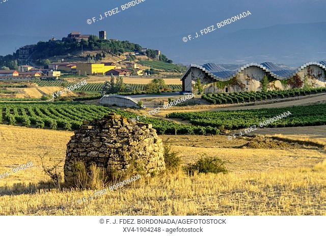 Vineyard views of Laguardia, La Rioja, Spain