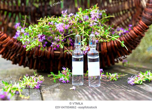 Alternative Medicine.Thyme and medical ampoules on a wooden rustic background. Essential oils and herbal supplements