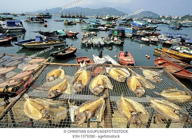 harbour of Chung Chau island, Islands District, New Territories, Hong-Kong, People's Republic of China, Asia