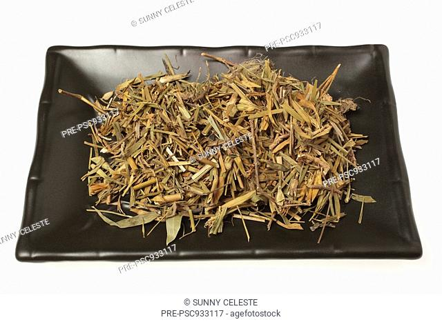 dried leaves of the medicinal plant Fringed Pink, Superb Pink, Dianthus superbus, Qu mai