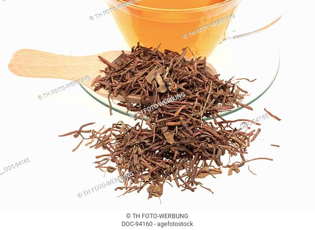 medicinal tea made of the dried roots of the medicinal plant Aster tataricus , Purple Aster Root , Zi Wan