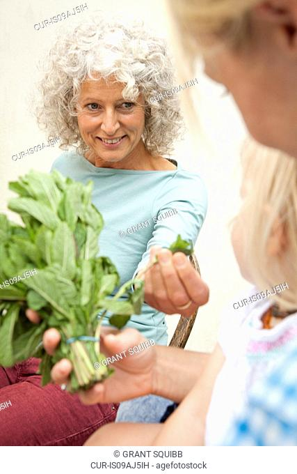Mature woman with daughter and granddaughter smelling bunch of mint in garden