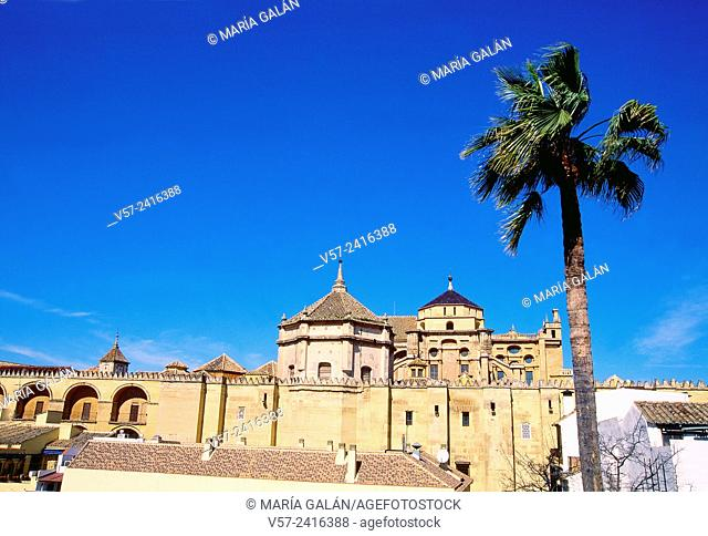 Mosque cathedral. Cordoba, Spain
