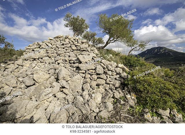 túmulo de Son Ferrandell-Son Oleza, I milenio a C. , Valldemossa, Mallorca, Balearic islands, spain