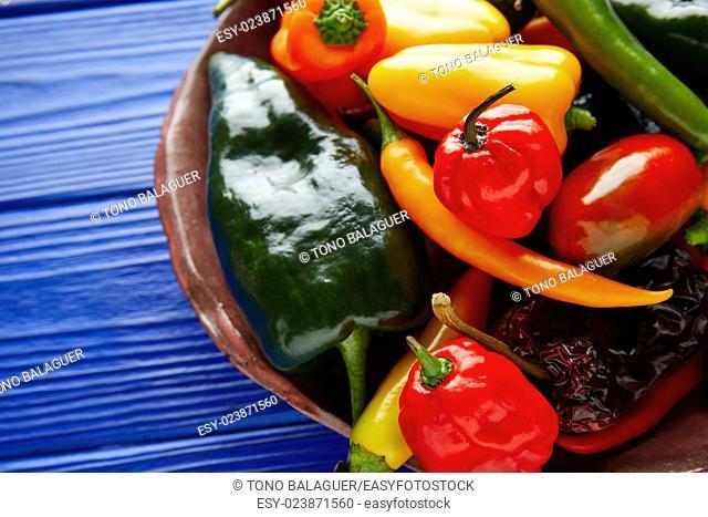 Mexican hot chili peppers colorful mix habanero poblano serrano jalapeno sweet