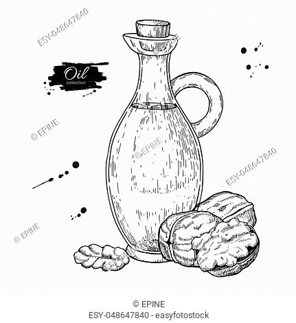 Bottle of walnut oil. Vector Hand drawn illustration. Glass pitcher vintage drawing isolated on white background. Great for menu, banner, label, logo, flyer