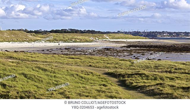 dunes, beaches, coastal path, on the dunes of Ste Marguerite, Landéda, finistère, brittany, france