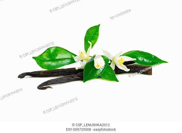 Vanilla sticks with flowers