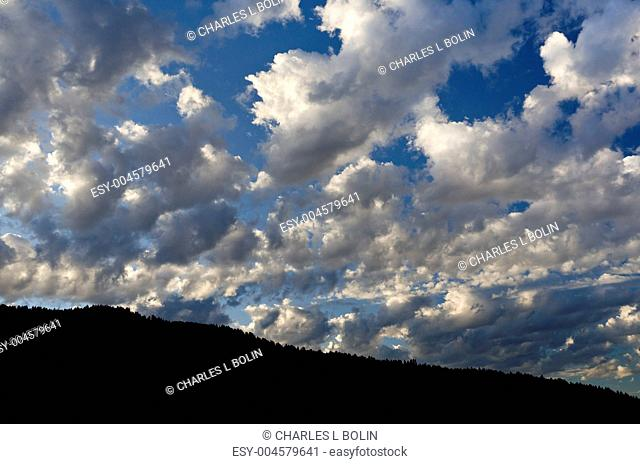 Clouds above a forested ridge in morning light, Grand Teton National Park, Wyoming, USA