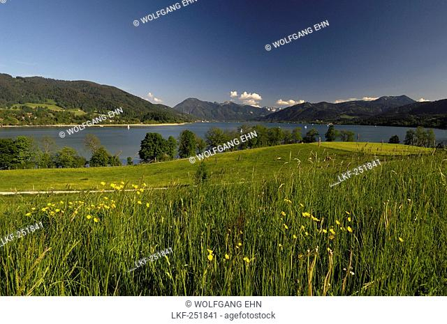 Landscape at Lake Tegernsee, Upper Bavaria, Bavaria, Germany