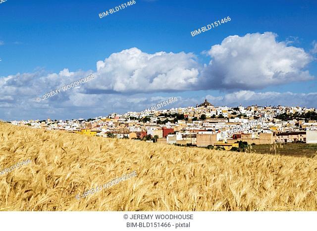 Crop fields and Las Cabezas de San Juan cityscape under blue sky, Andalusia, Spain