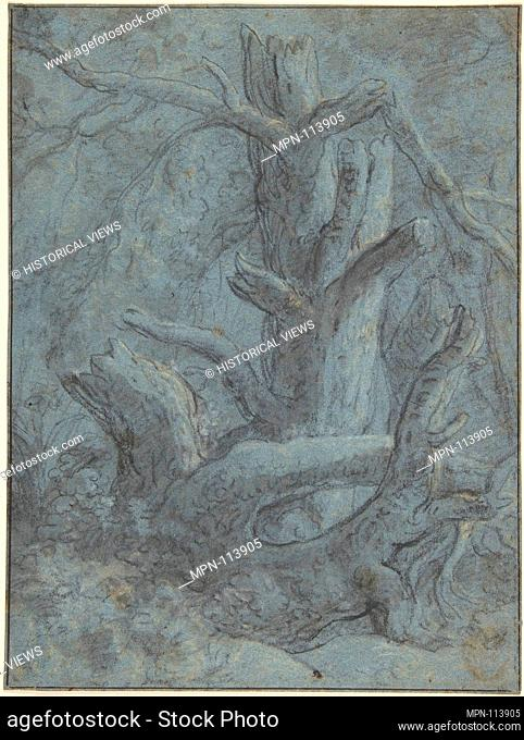 Study of a Blasted Tree Trunk and Branches. Artist: Simon de Vlieger (Dutch, Rotterdam (?) ca. 1600/1601-1653 Weesp); Former Attribution: Formerly attributed to...
