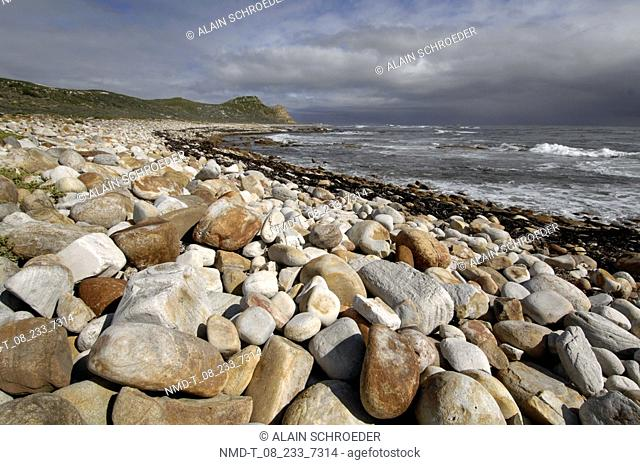 Stones and pebbles on the beach, Cape Of Good Hope, Cape Peninsula National Park, Cape Town, Western Cape Province, South Africa