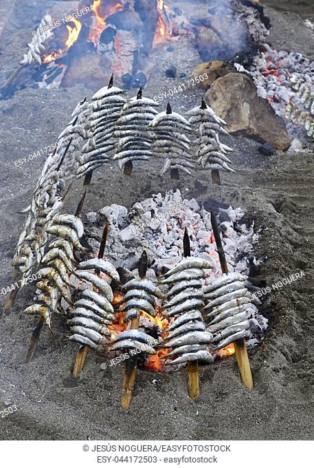 Traditional sardine specimens in Malaga. Spain
