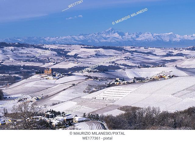 Grinzane Cavour, Piedmont, Italy, Hilly landscape on the vineyards of the Langhe in the Unesco territory of Italy are visible the Castle of Grinzane Cavour and...