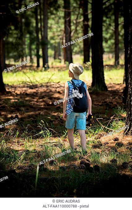 Boy exploring in woods