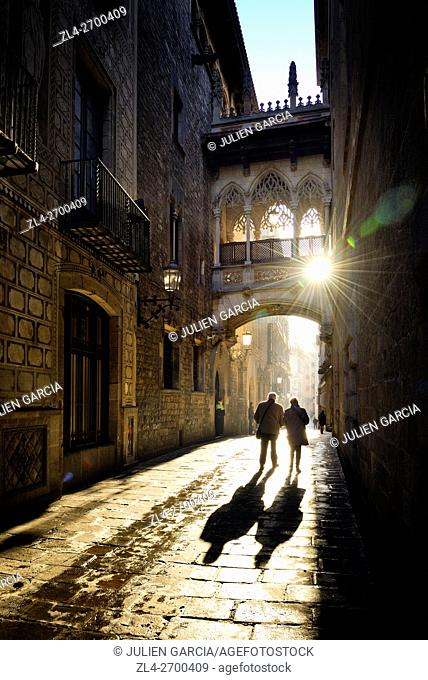 Spain, Catalonia, Barcelona, Barri Gotic (Barrio Gotico, Gothic Quarter), Carrer del Bisbe (Bishop's street), neo-Gothic bridge Pont del Bisbe (Bishop's bridge)