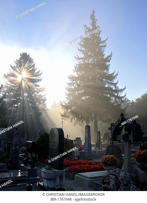 Cemetery in the morning mist, Berndorf, Triestingtal, Lower Austria, Austria, Europe