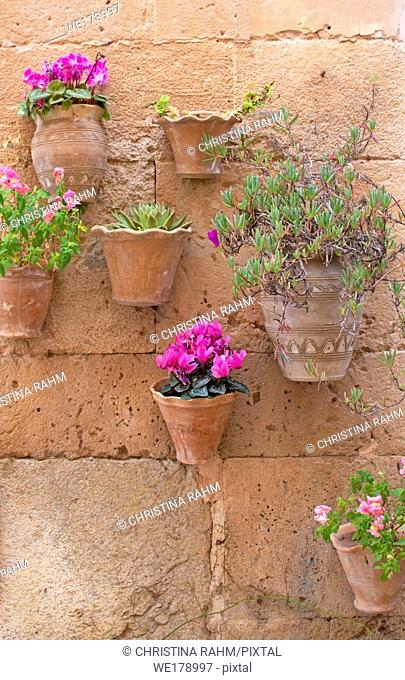 Beautiful terracotta flowerpots with pink cyclamen flowers on stone wall in Valldemossa Mallorca