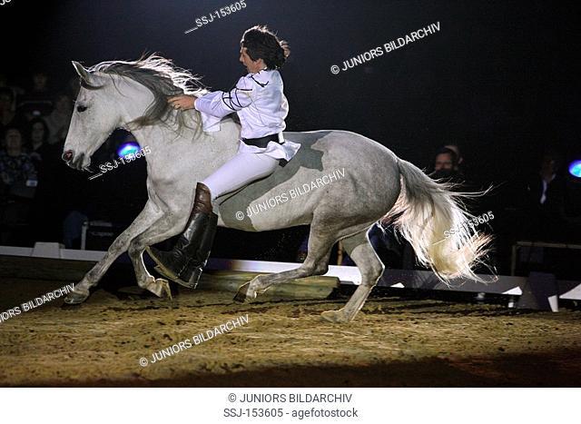 man riding on Lusitano horse