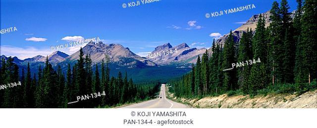 Road in Canadian Rockies, Alberta, Canada