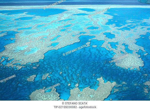 Australia Queensland Barrier reef