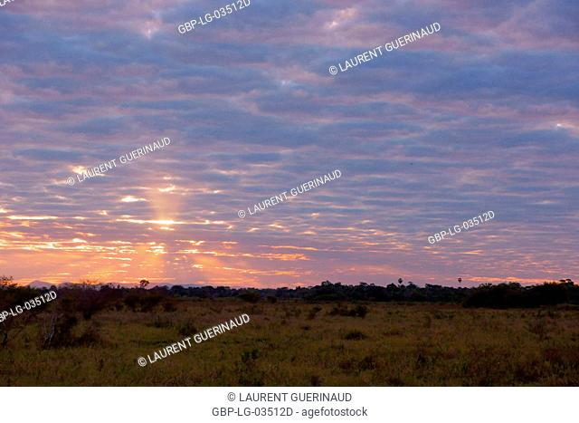 Sunset, Pantanal, Mato Grosso do Sul, Brazil