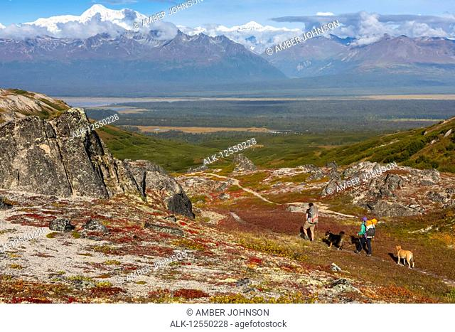 Woman and man backpacking on the tundra with their dogs along the Kesugi Ridge Trail, Denali State Park, on a sunny autumn day