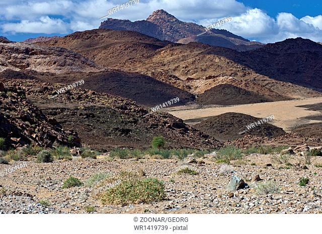 desert-like landscape in the Richtersveld
