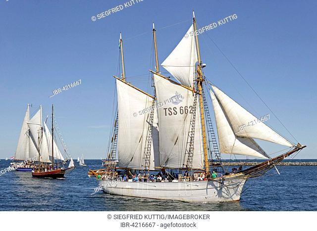 Sailing boats, Hanse Sail, Rostock, Mecklenburg-Western Pomerania, Germany