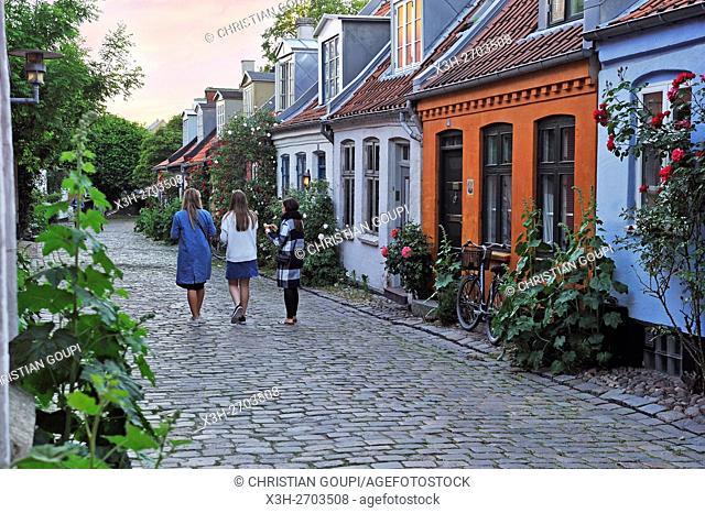Mollestien lane, picturesque cobbled street right in the centre of Aarhus, Jutland Peninsula, Denmark, Northern Europe