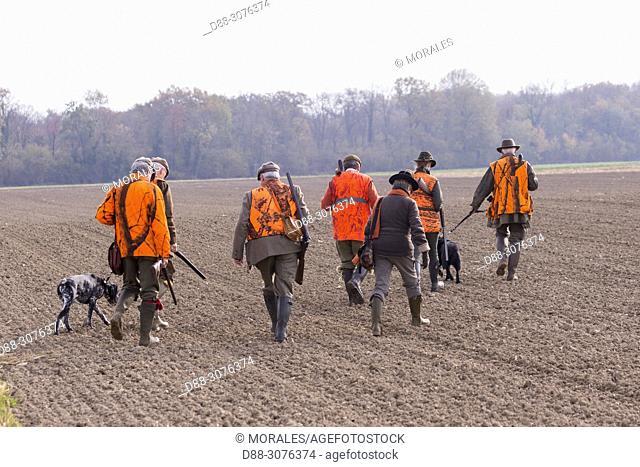 France, Grand Est Region, Bas Rhin, Mackenheim, Hunting small game