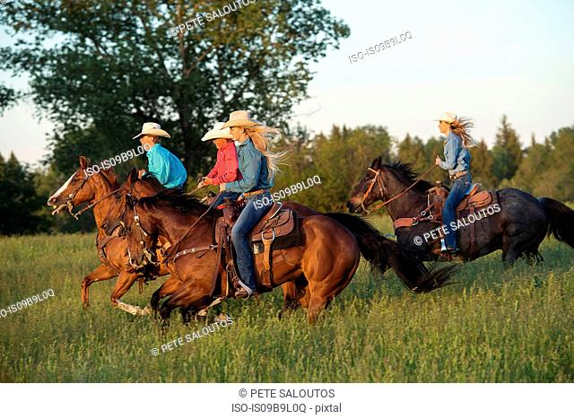 Group of people riding horses in field