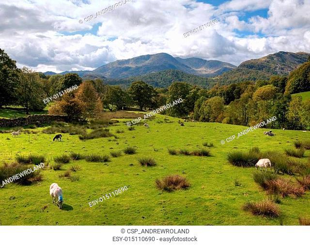 Loughrigg Fell, Cumbria